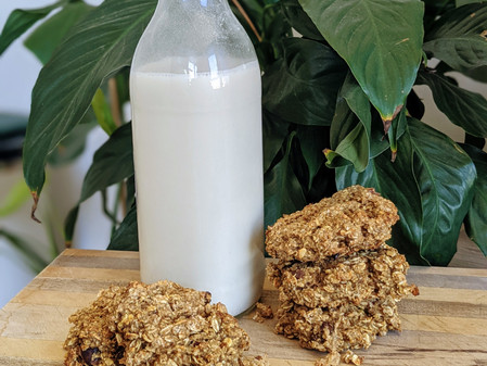 Oat Pulp Cookies (Vegan/Gluten Free/No Refined Sugar)