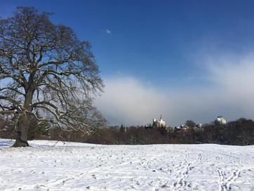 Greenwich park snow