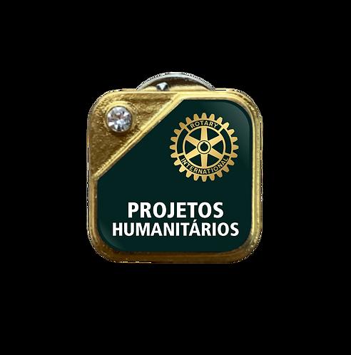 Distintivo Rotary Projetos - Verde c/ Strass