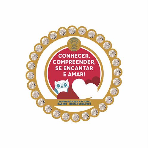 Pin Lema ESR 2018-20 c/ STRASS