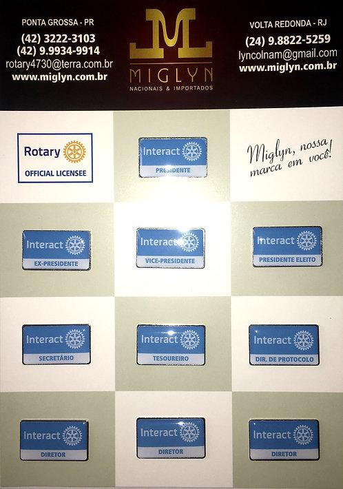 Pins Kit Conselho Diretor Interact (Azul)