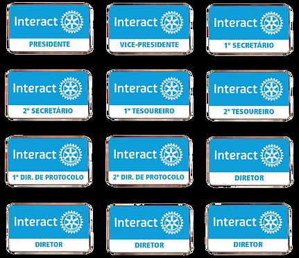 Kit Pins Conselho Diretor do Interact