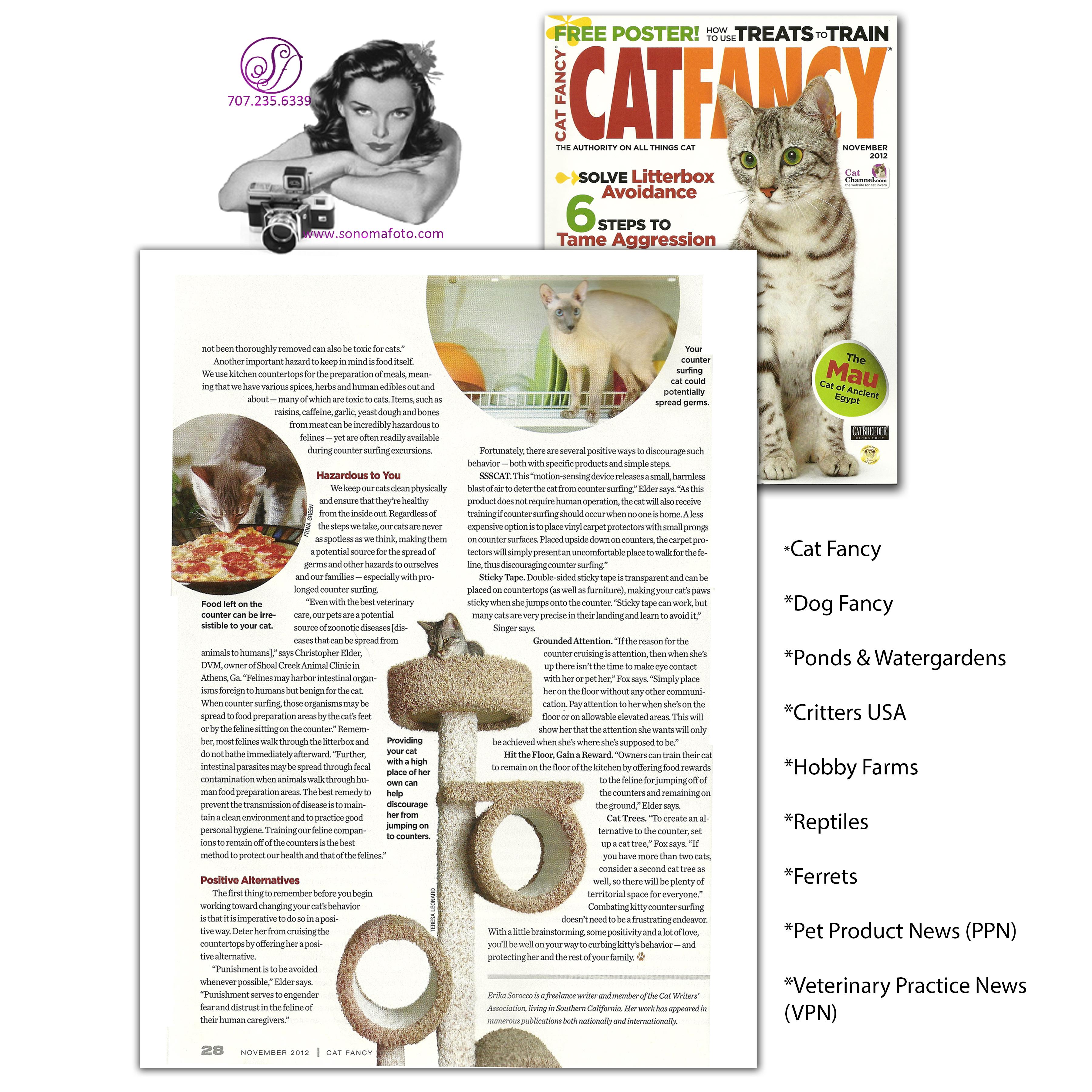 cat fancy tearsheet.jpg