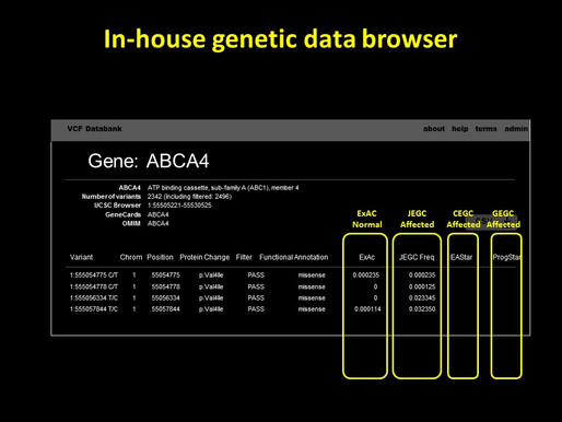 The original data browser to show the ethnic difference of ABCA4 allele frequency has been updated.