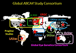 Global ABCA4 study.png