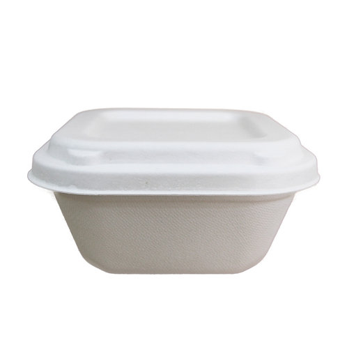 Sugarcane Square Bowls - 500mL