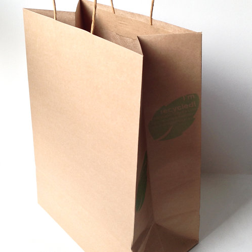 Paper Bags (Large)