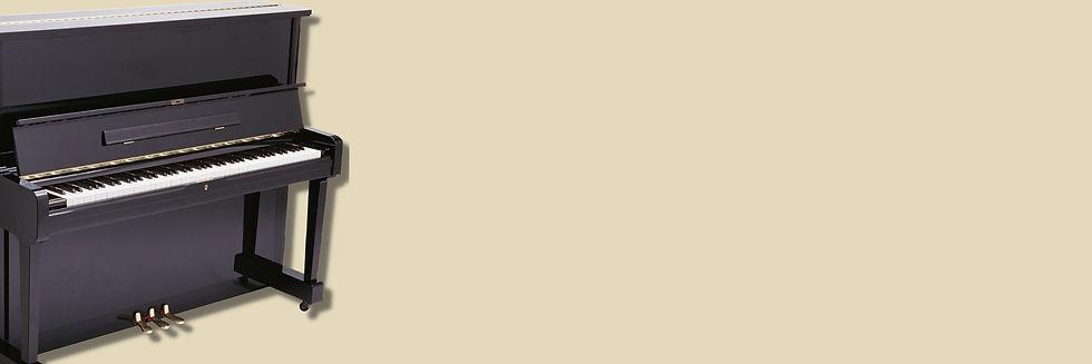 21-04_Site_SkillMap_PianoImg.jpg
