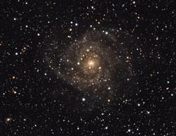 IC342 - GALASSIA NASCOSTA_ZOOM.jpg