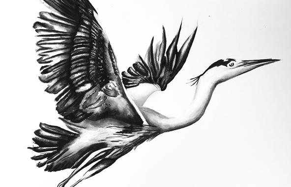 Heron Watercolour