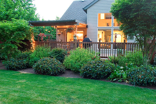 contemporary-home-seen-from-yard.jpg