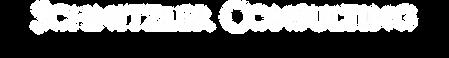 Schnitzler-Logo.png
