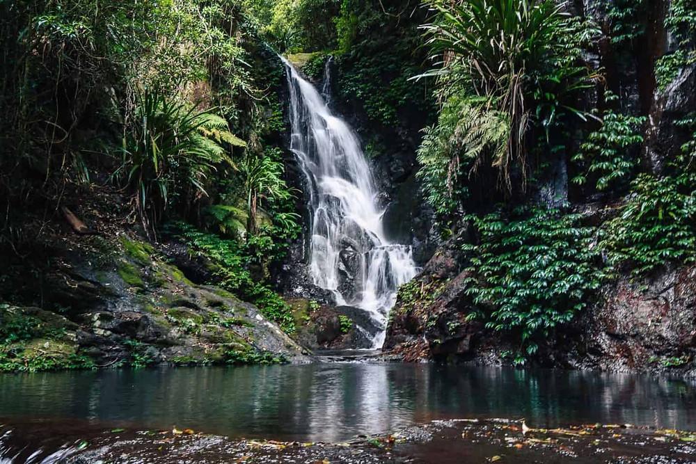 Elebana Falls Lamington National Park QLD