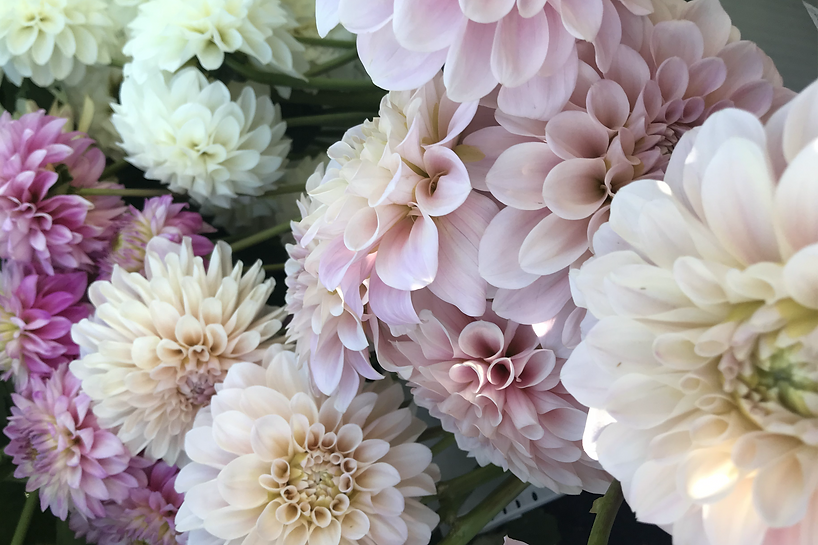 Idaho wedding flowers sweet nathalie