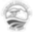 Stewart County Logo_edited.png