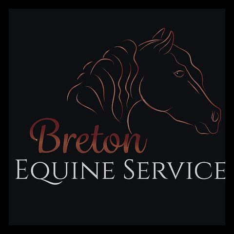 Breton Equine Logo W Border (1).jpg