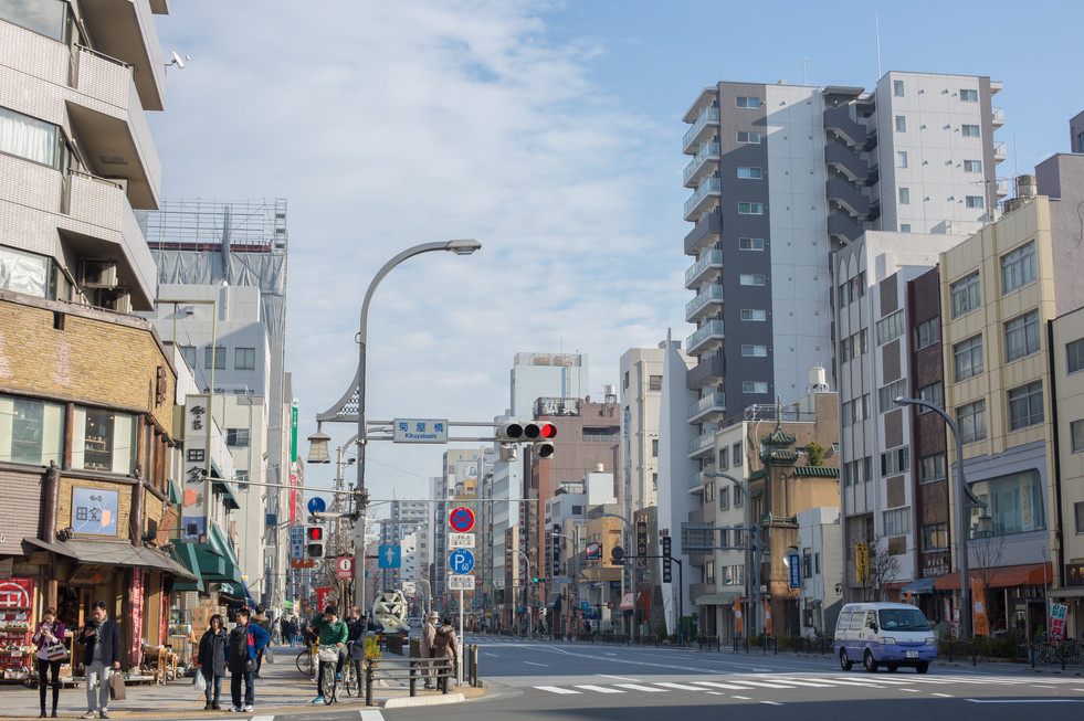 Street of Downtown Tokyo, Japan