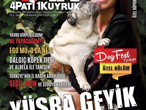 Ahmet Beyler 4P1K'da!