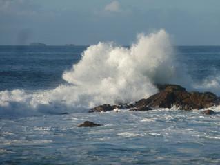 Isle Of Iona Residency Part 3