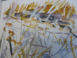 Autumn drawings, tracing movements, chasing light…