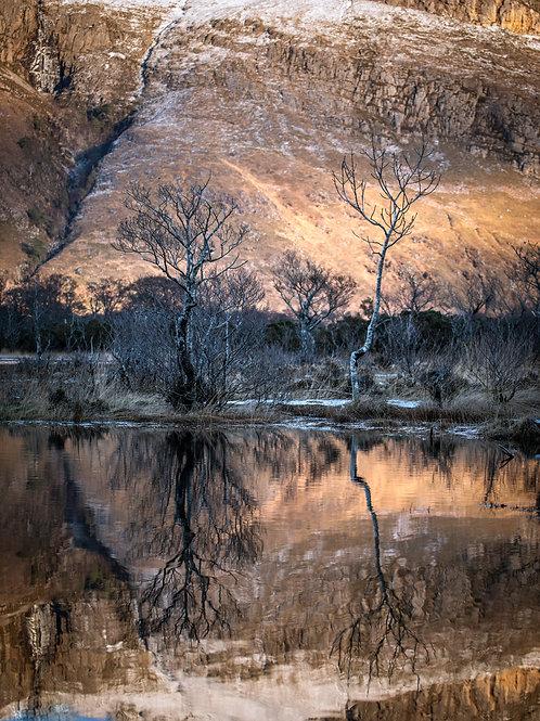Loch Maree Tones