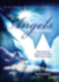 My Angels Connections | Raul Estevez | White Light Publishing House