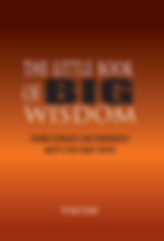 Little Book of Wisdom   Sally Glenn   White Light Publishing