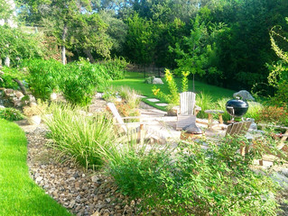 How to make sure your Landscape and Garden survives the Texas Summer