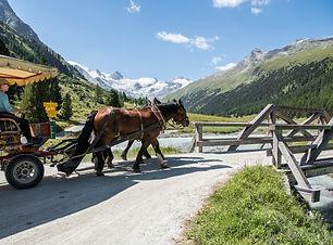 Pferdewagen Val Roseg.jpg