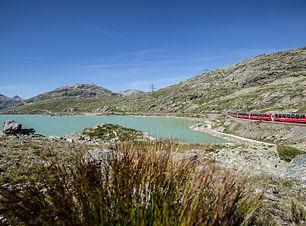 Bernina Express Lago di Bianco.jpg