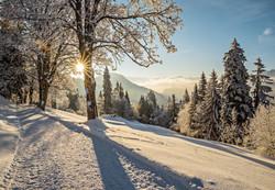 HOME_Switzerland Winter Rigi Winterwandern