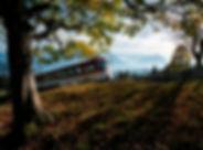 Rigi Bahn Herbst komprimiert.jpg