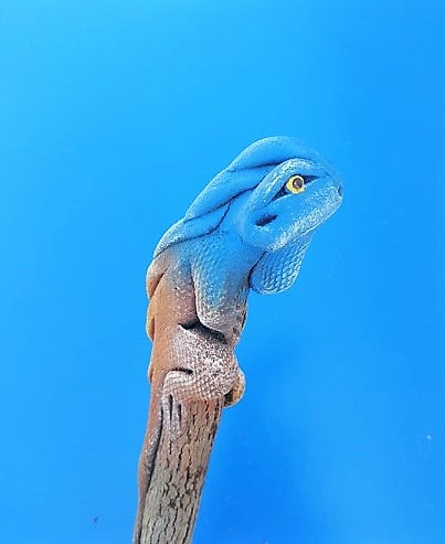 Crayon iguane bleu
