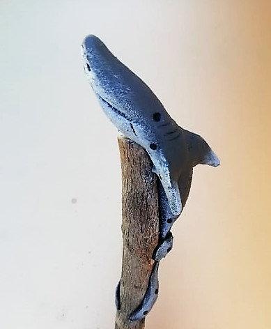 Crayon requin