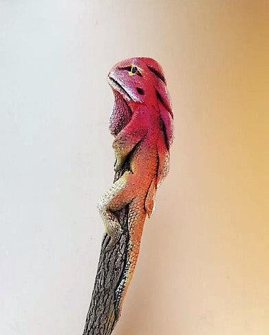 Crayon iguane rouge