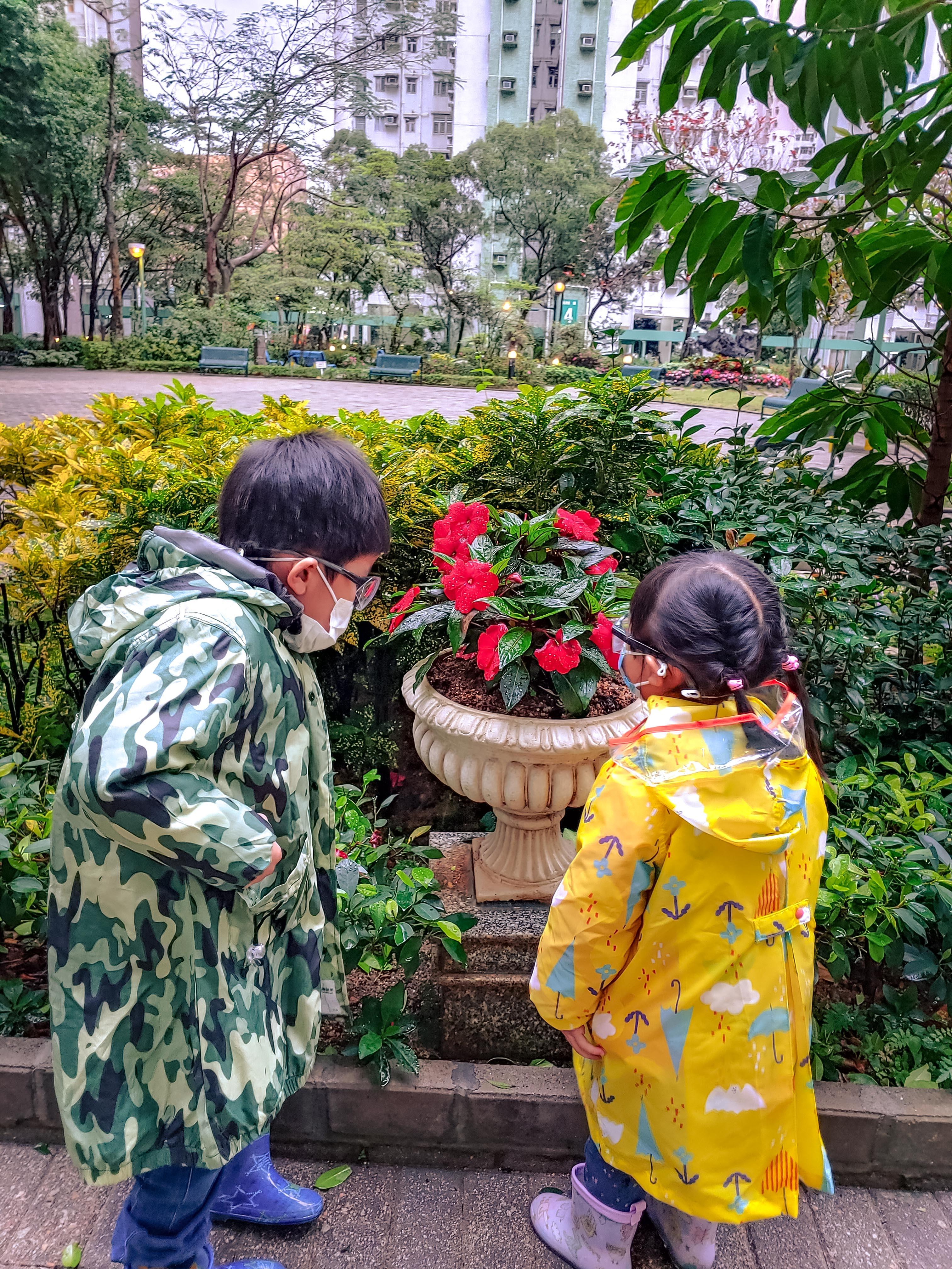 陳智朗-真的賞花了
