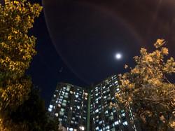 楊樂穎- 美麗的天空