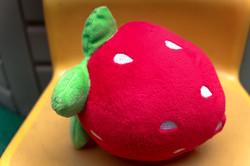 吳定宇_草莓