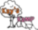 Kay's Kamp, Delaware's Oncology Summer Camp, Camp for Kids with Cancer, Kay's Foudation