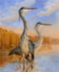 Herons-+-watermark-1000-x-800.jpg