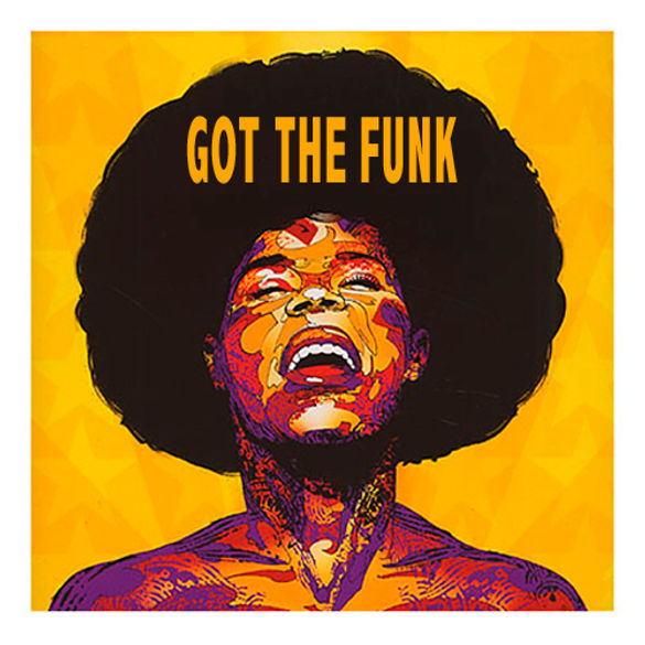 Got The Funk.jpg