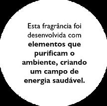 Turmalina negra text 2.png