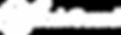 WatchGuard-logo-white.png