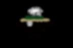 Logo rombo.png