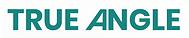 true angle logo.png
