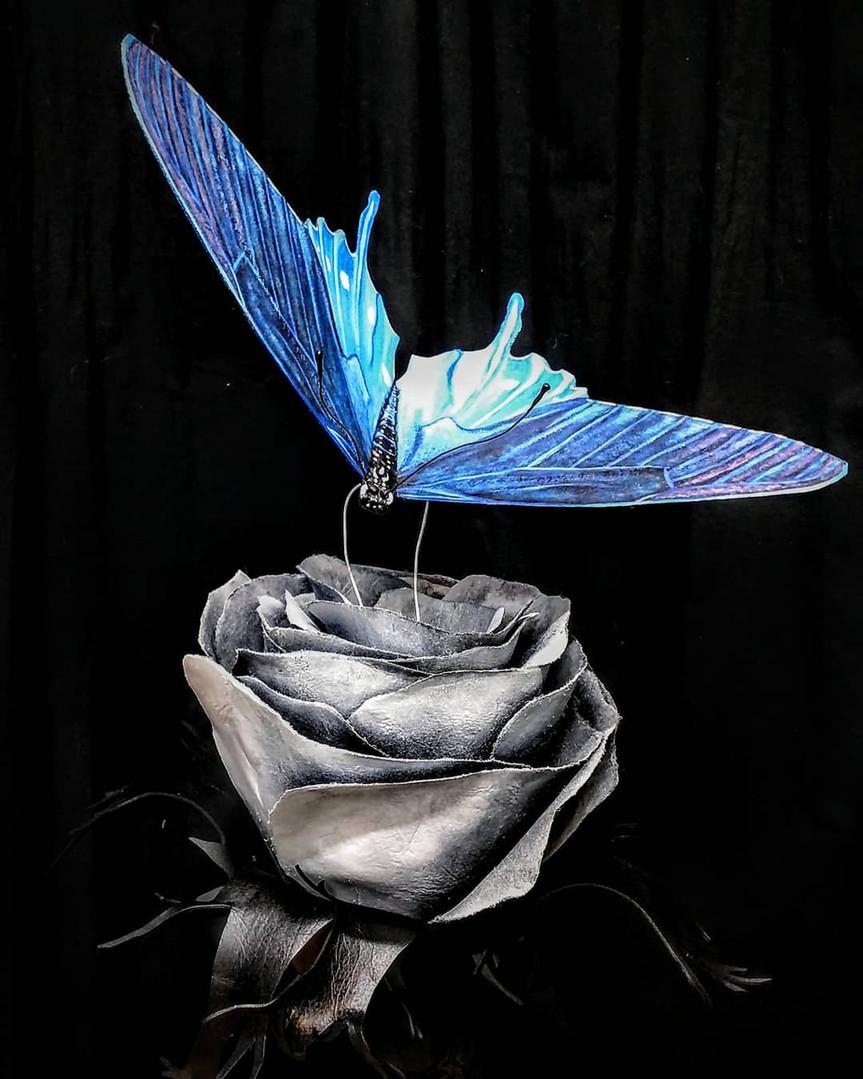 A Flutter of Life