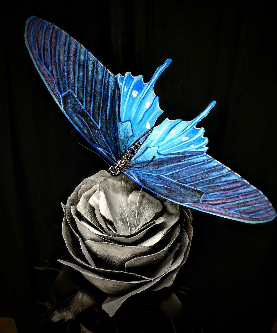 Detail: Top of butterfly