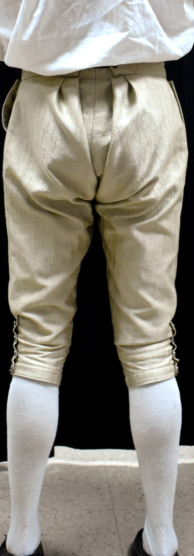 Breeches Back View