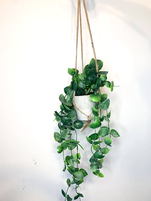 Faux Trailing Hoyas in Hanging Pot