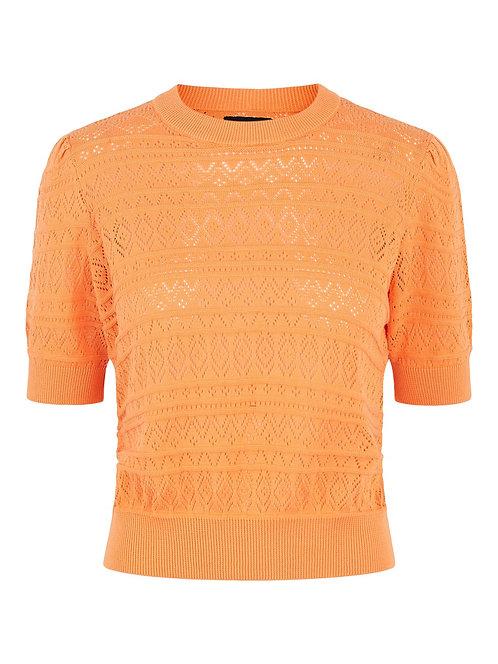 Short sleeve pointelle knit